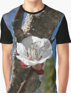 A Single Apricot Blossom Graphic T-Shirt