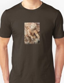 Ancient Marble Relief Of A Cherub T-Shirt