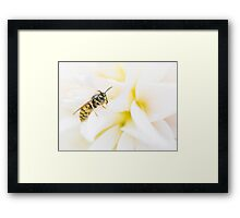 Love Hate Framed Print