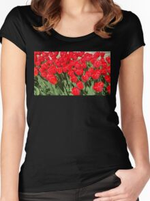 Belgium Tulips in Red Women's Fitted Scoop T-Shirt
