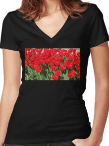 Belgium Tulips in Red Women's Fitted V-Neck T-Shirt