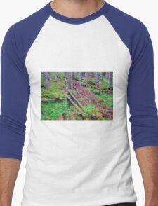 Spring meets winter in the Alps Men's Baseball ¾ T-Shirt