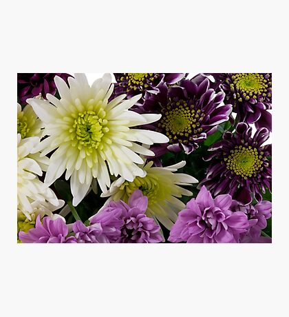 Bunch of Flowers Photographic Print