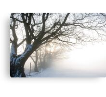 Misty Dawn over Snowy Field Canvas Print