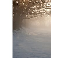 Misty Dawn over Snowy Field Photographic Print