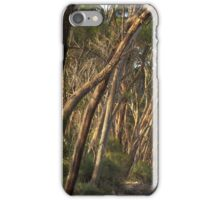 Wattle Grove Evening iPhone Case/Skin