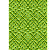 Green Dragon Scales Pattern Photographic Print