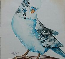 Budgie - For Megan by Picatso