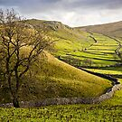 Winterburn Moor Gordale by David Lewins