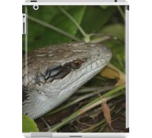 Blue Tongue Lizard In The Undergrowth iPad Case/Skin