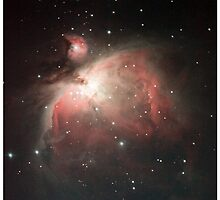 M42 the Orion nebula by Andrew Jeffries