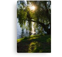 A play of light  Canvas Print