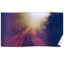 Soft Forest Poster