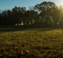 Golden Dew Autumn Sunrise Sticker