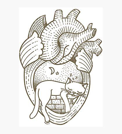 Vintage Tattoo - Cat Heart Photographic Print