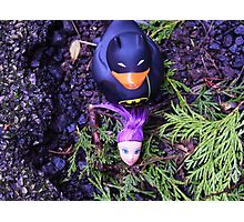 Adventures Of Bat-duck - Decapitation Scene Photographic Print