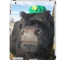 Black Irish iPad Case/Skin