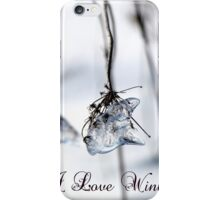 I Love Winter iPhone Case/Skin