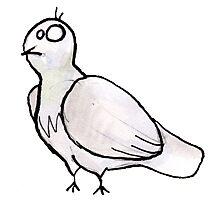 pigeon gris Photographic Print