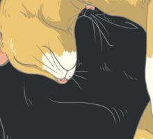 Cats :3 Sticker