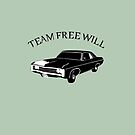 Team Free Will by saniday