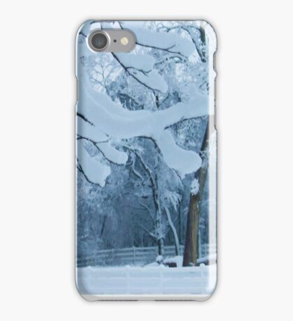 Frozen Winter Trees iPhone Case/Skin