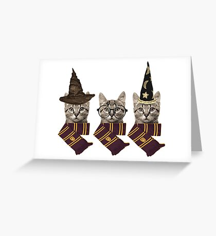 Wizard cats Greeting Card