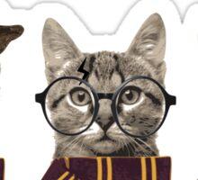 Potter cats Sticker