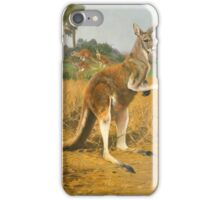 Wilhelm Kuhnert GERMAN RED KANGAROOS IN THE OUTBACK iPhone Case/Skin