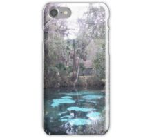 the Real Florida iPhone Case/Skin