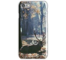 A buck, chillin' iPhone Case/Skin