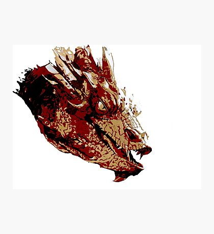 Smaug the Unassessably Wealthy Photographic Print