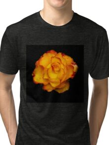 Beautiful red and yellow rose Tri-blend T-Shirt
