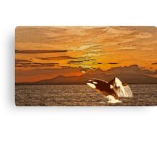 Sunset Whales Canvas Print
