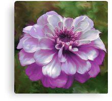 Beautiful Purple Zinnia Painting Canvas Print