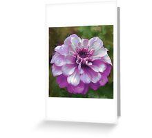 Beautiful Purple Zinnia Painting Greeting Card