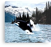 Leaping Whales Metal Print