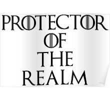 Protector Of The Realm Poster