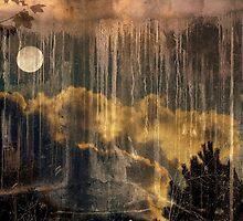 Memories of yesteryear by Vasile Stan