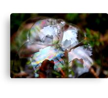 Photographer Inside Four Bubbles Canvas Print