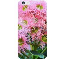 GUM TREE BLOSSOMS iPhone Case/Skin