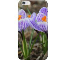 Lovely Pair of Crocuses iPhone Case/Skin