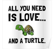 Love And A Turtle Poster
