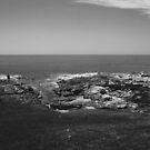 Ocean by ImogenMosher