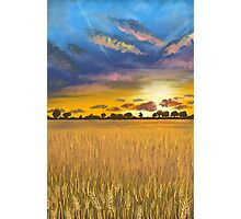 Ukranian sunset beautiful landscape Photographic Print