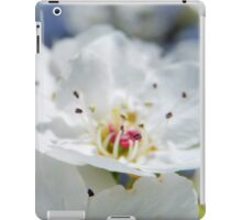 SWEET DAYS AND BLOSSOMS iPad Case/Skin