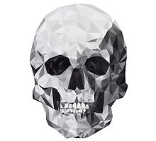 Grey Geometric Head Skull by Macbrittdesigns