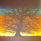 The Giant Oak by Darla Gojcz