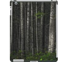 The Matrix Codes a Forest iPad Case/Skin