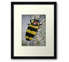 Jewel Beetle Watercolour Painting Framed Print